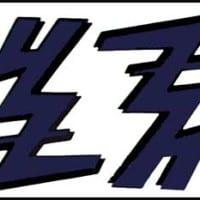 S-21 YZ Blue Shroud Decal (pair)